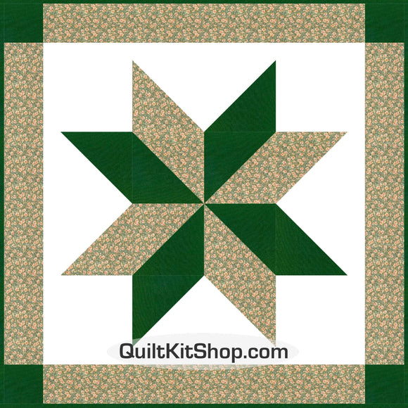 Freedom Flower Star Quilt Kit