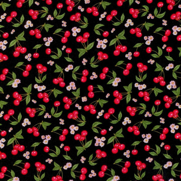 What's Cookin' Cherry Toss RJR Fabrics