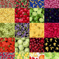 "Farmers Market Fruit Charm Pack 5"" Squares"