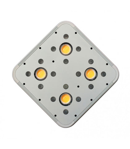 APOLLO EVOLUTION 4 COB/SMD 127W/228P