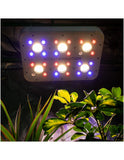 DELIGHT APOLLO EVOLUTION LED 6 COB/SMD 180W/350P