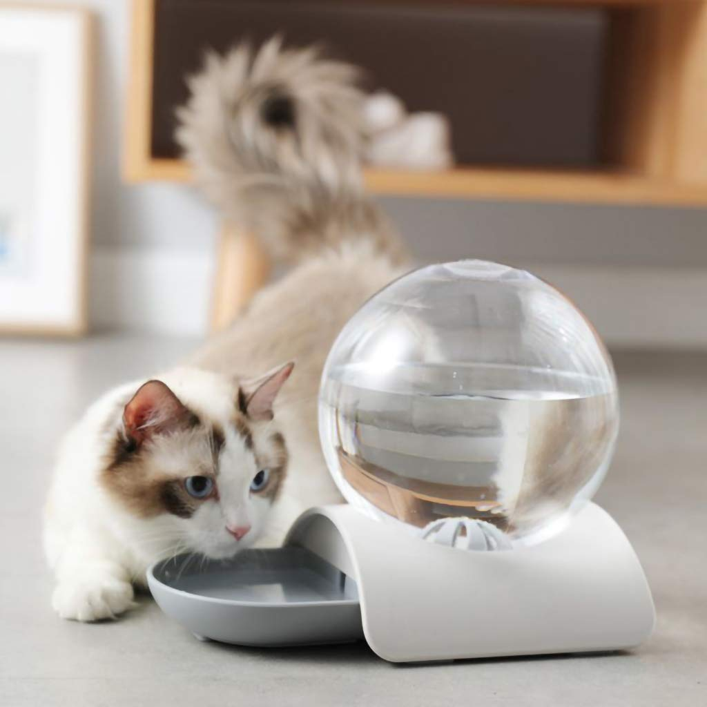 Fontaine Automatique Bubble® Chat & Chien - One PETS-TOP