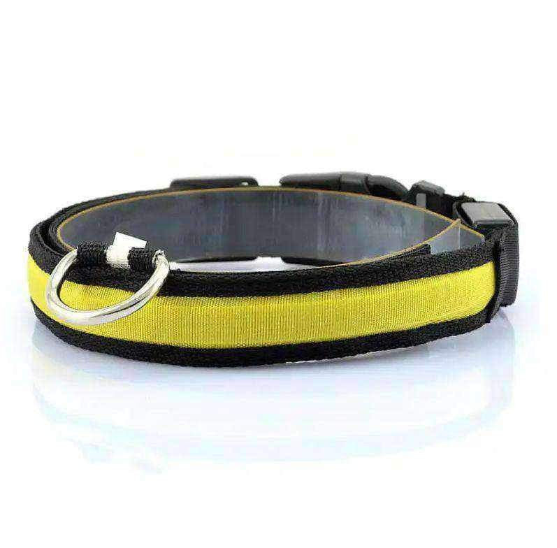 Collier Led pour chien - One PETS-TOP