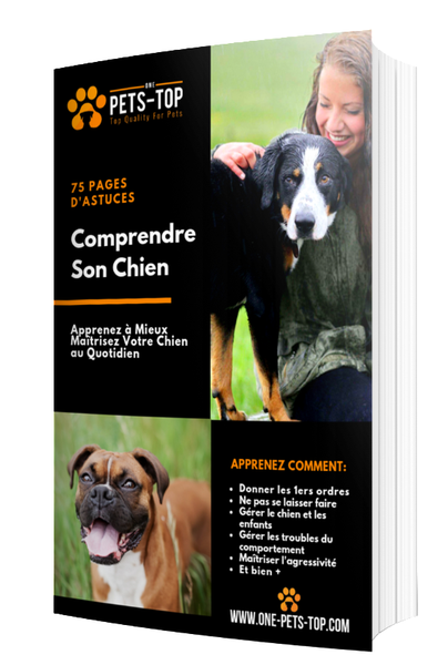 "EBOOK "" COMPRENDRE SON CHIEN"""