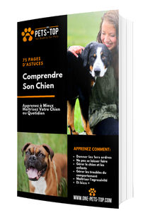 "EBOOK "" COMPRENDRE SON CHIEN"" - One PETS-TOP"