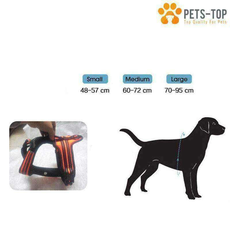 Harnais Sport Chien - One PETS-TOP