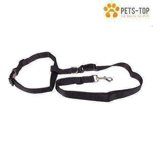Kit Running Chien Basic - One PETS-TOP
