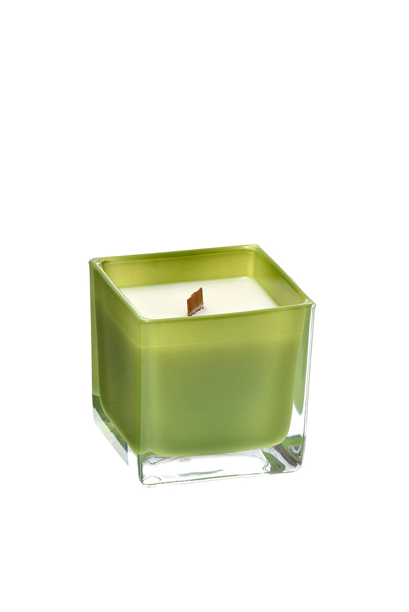 juniper + spruce coconut wax candle in a green glass container