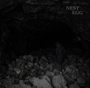 Nest Egg – Nothingness Is Not A Curse (REPRESS)