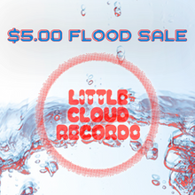 $5 LP Flood Survivors!!