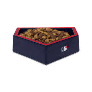 Atlanta Braves Home Plate Dog Bowl