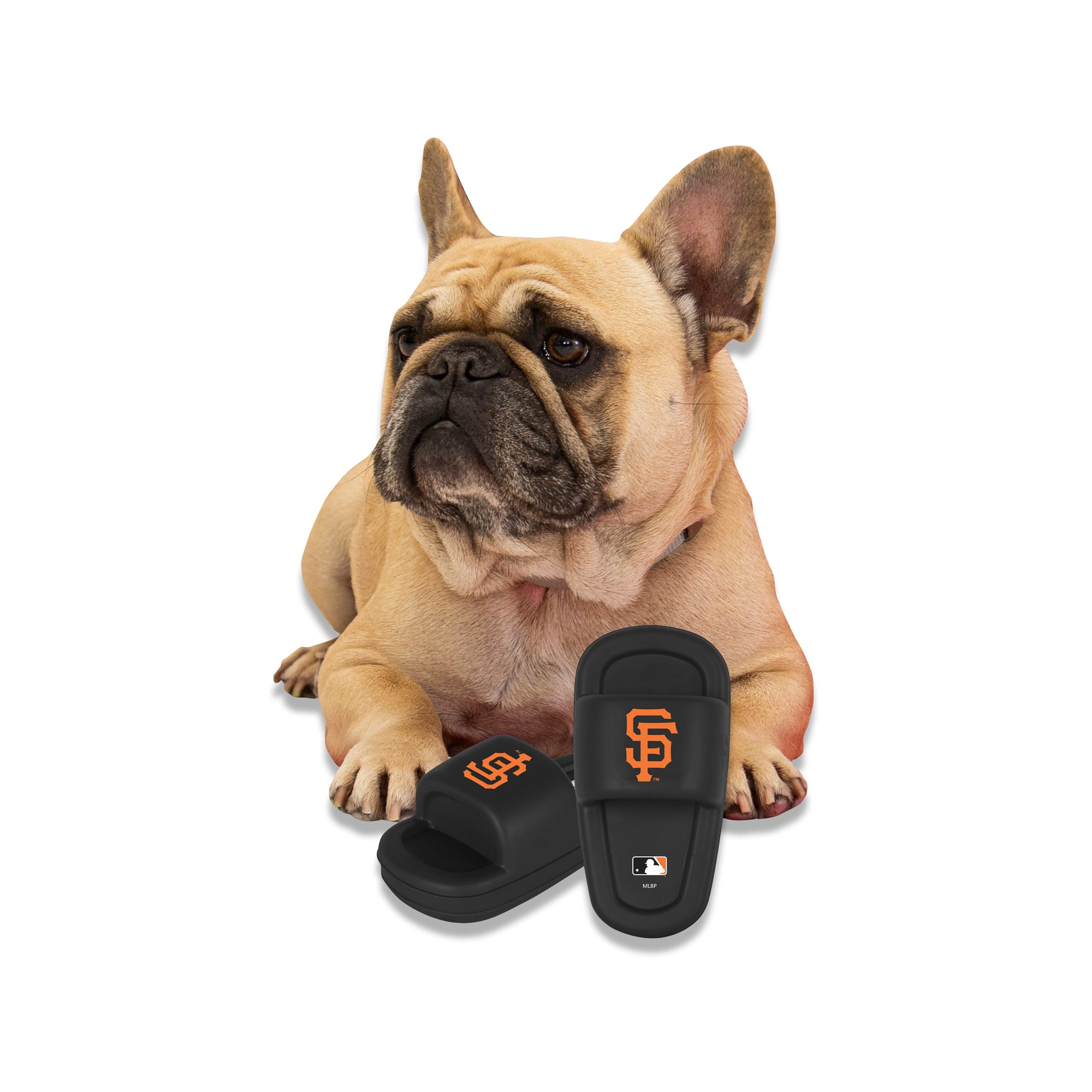 San Francisco Giants Mutt Slide Dog Chew Toy
