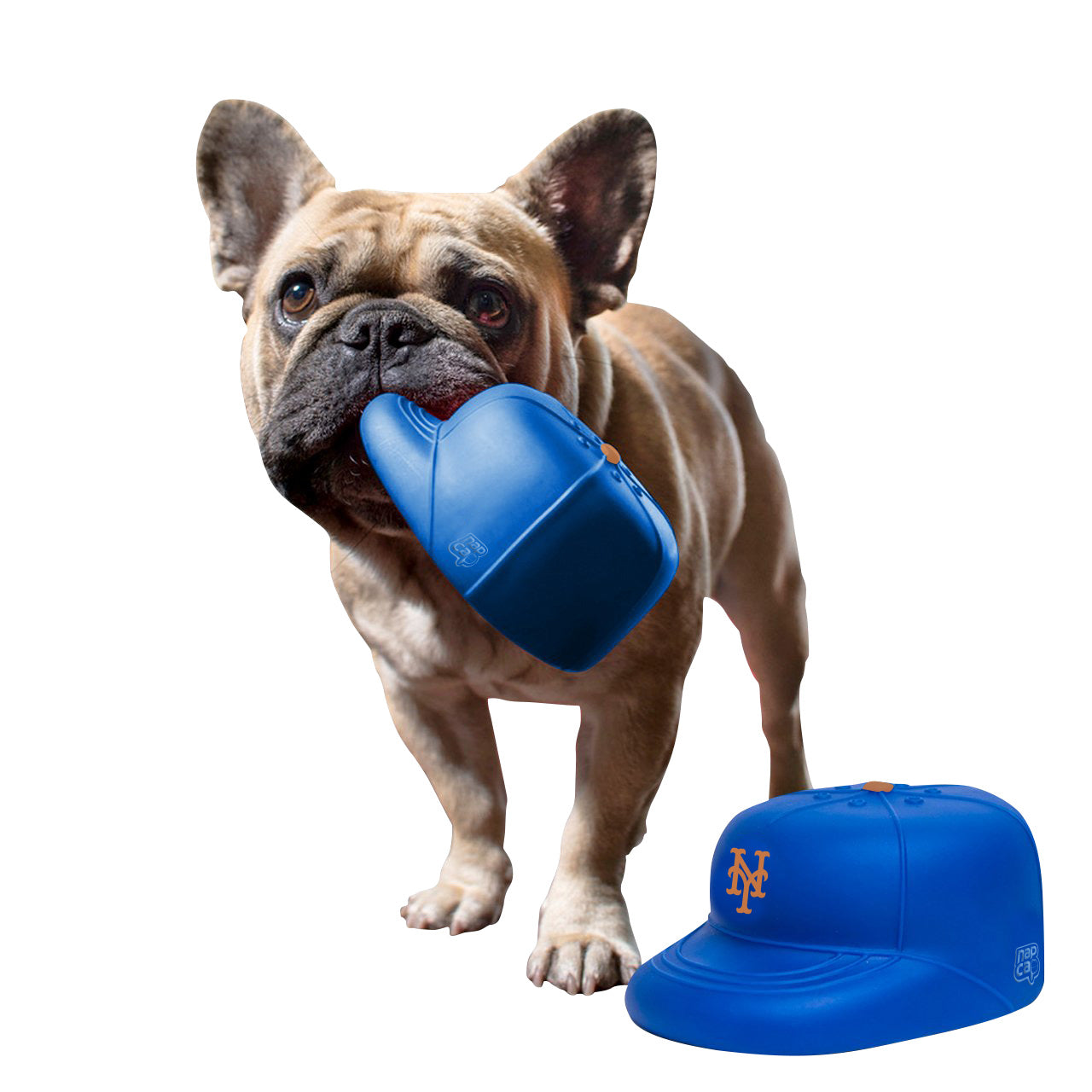 New York Mets PlayCap Dog Chew Toy