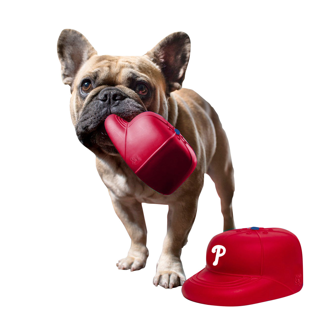 Philadelphia Phillies PlayCap Dog Chew Toy