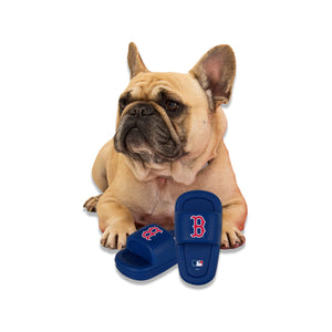 Nap Cap Boston Red Sox Mutt Slide Dog Chew Toy
