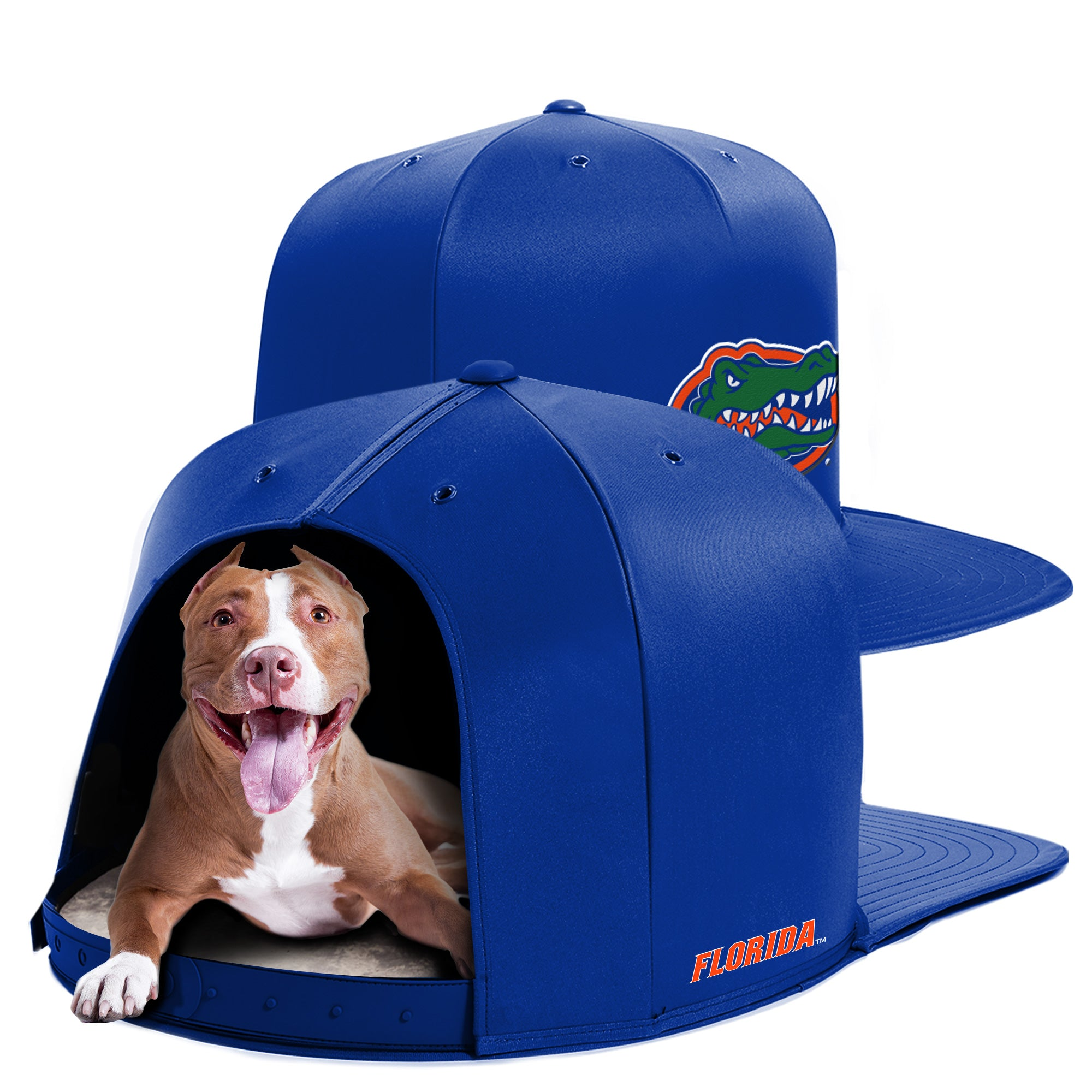 University of Florida Nap Cap Dog Bed