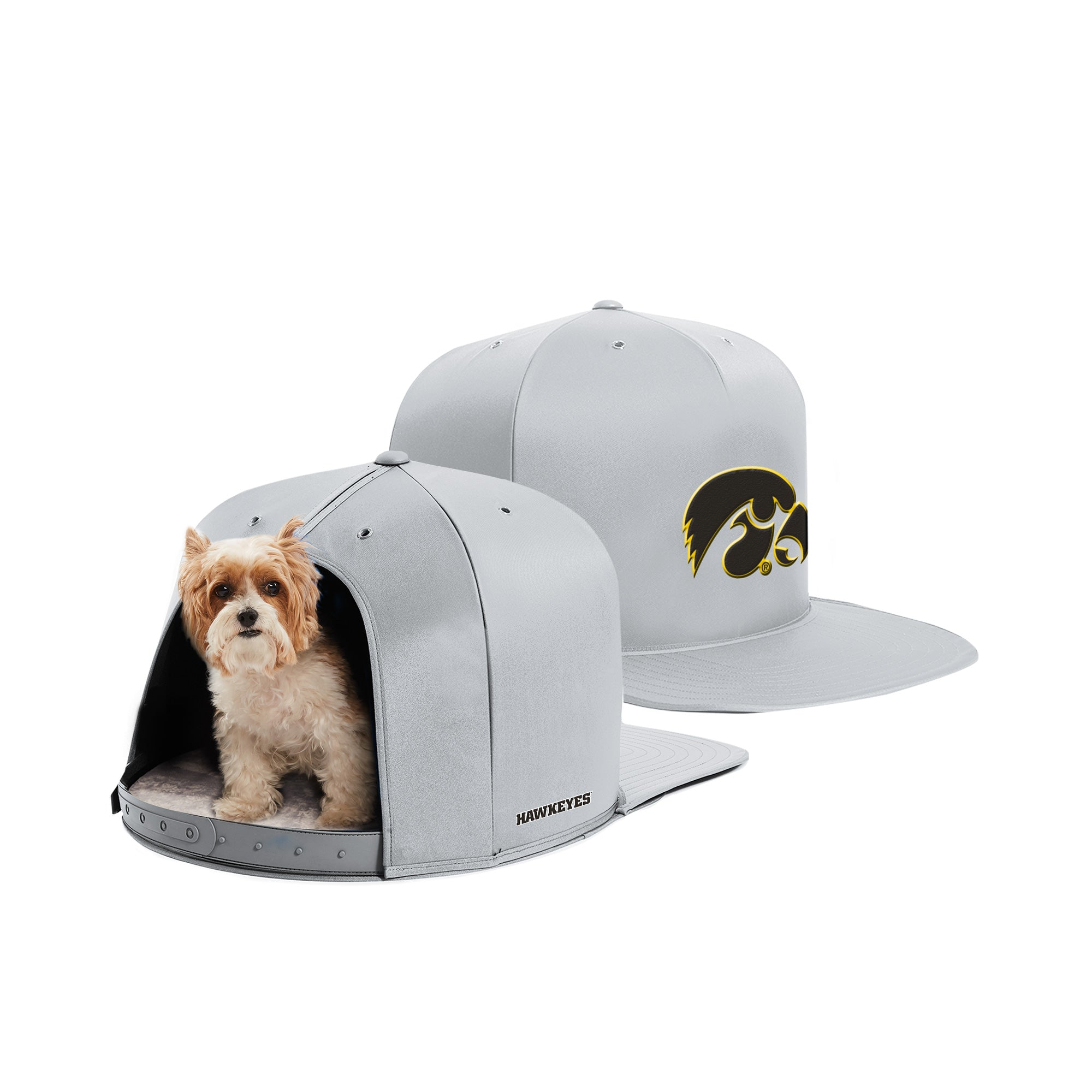 Nap Cap - University of Iowa - Pet Bed