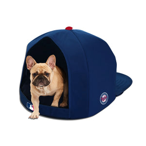 Minnesota Twins Nap Cap Plush Dog Bed