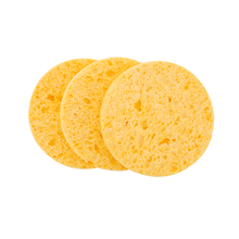 Artist Select Natural Cellulose Sponge (3 pack)