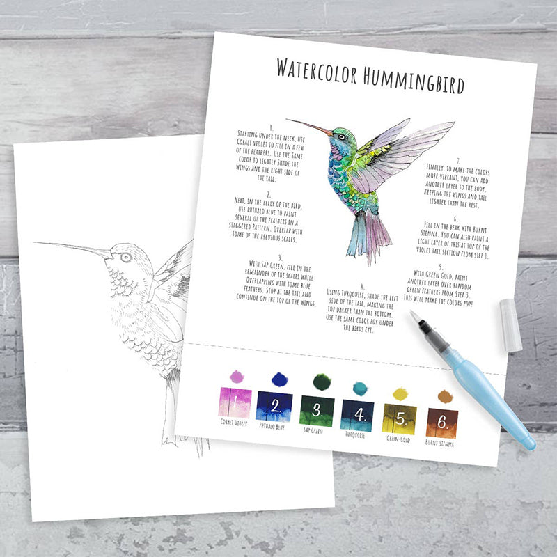 Maya X Kiwi Hummingbird DIY Watercolor Kit