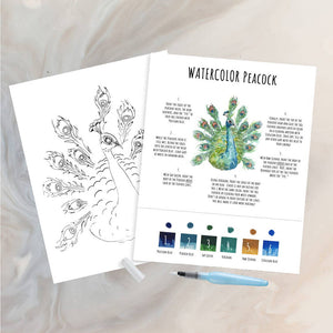 Maya X Kiwi Peacock DIY Watercolor Kit