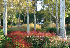 The Battery Bosque: An Urban Oasis