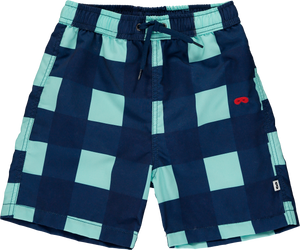 Swim Shorts Gingham