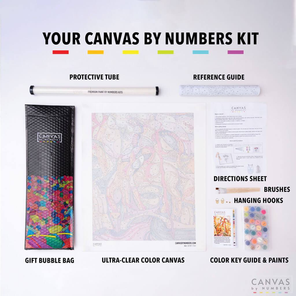 [USA Stock] Abstract Cat Face-Paint by Numbers for Adults-Canvas by Numbers
