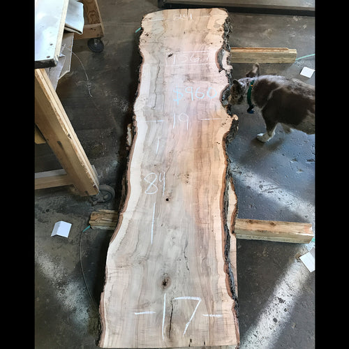 Live Edge Silver Maple Slab