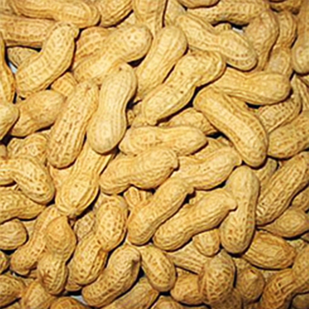 In-Shell Peanuts