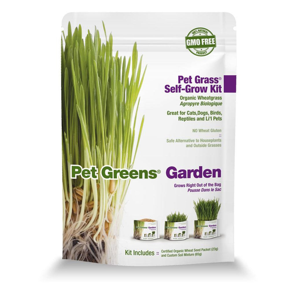 Pet Grass Self-Grow Kit - Garden (Wheatgrass)