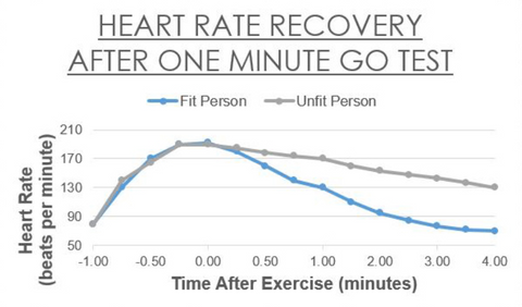 heart rate recovery after 1min