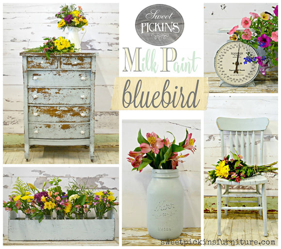 Blue Bird Milk Paint