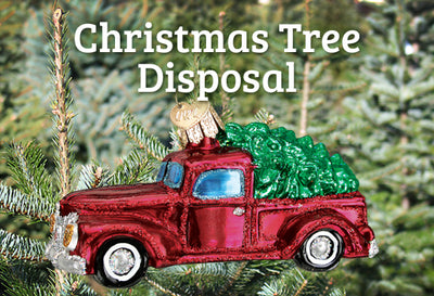 Christmas Tree Disposal For Real & Artificial Trees