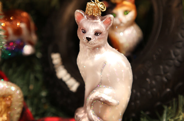 How To Keep Cats Off Christmas Trees.Cats And Christmas Trees Just Don T Mix Well Old World