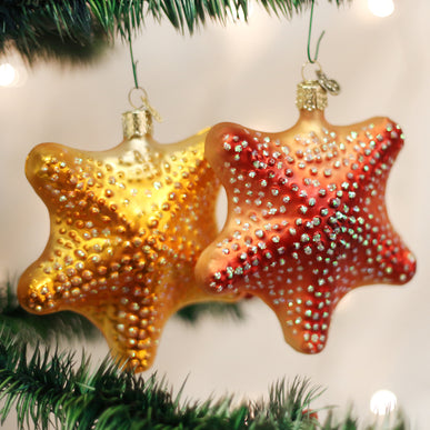 Starfish (a) Ornament