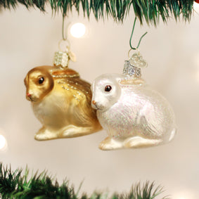 Cottontail Bunny (a) Ornament