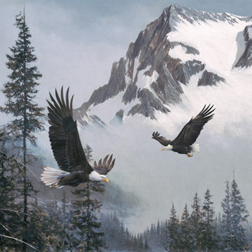 "Naturescapes - Where Eagles Soar panel - Blue Gray Multi - DP23039-94 - 43""(110cm)"