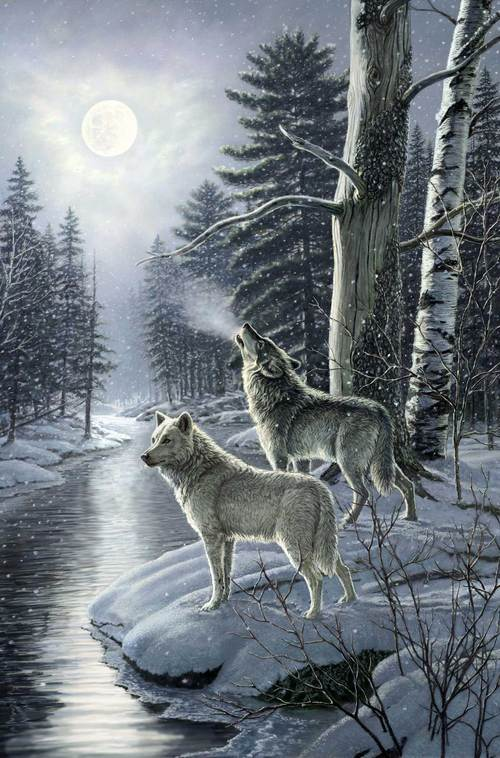 "Naturescapes Silver Moon panel - Wolf - Blue Multi - DP23656-42 - 28""(71cm)"