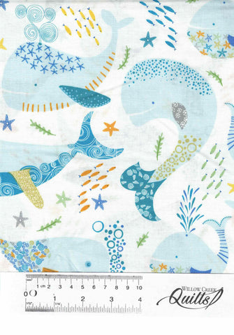 Little Squirt - Whales - 26444 - Z White