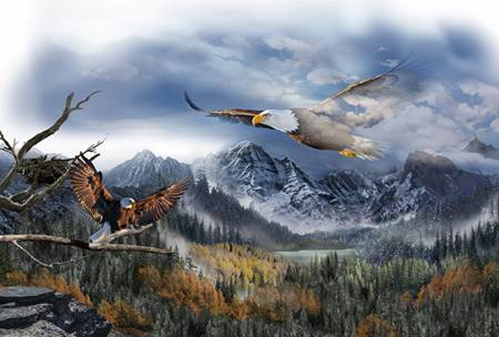 "Call of the Wild Eagles Digital panel - Q4489H-16 - 30"" (76cm)"