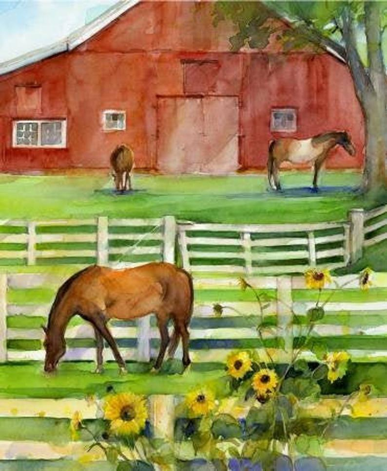"Sunflower Stampede panel - Multi with Barn - 16594P - 36""(91cm)"