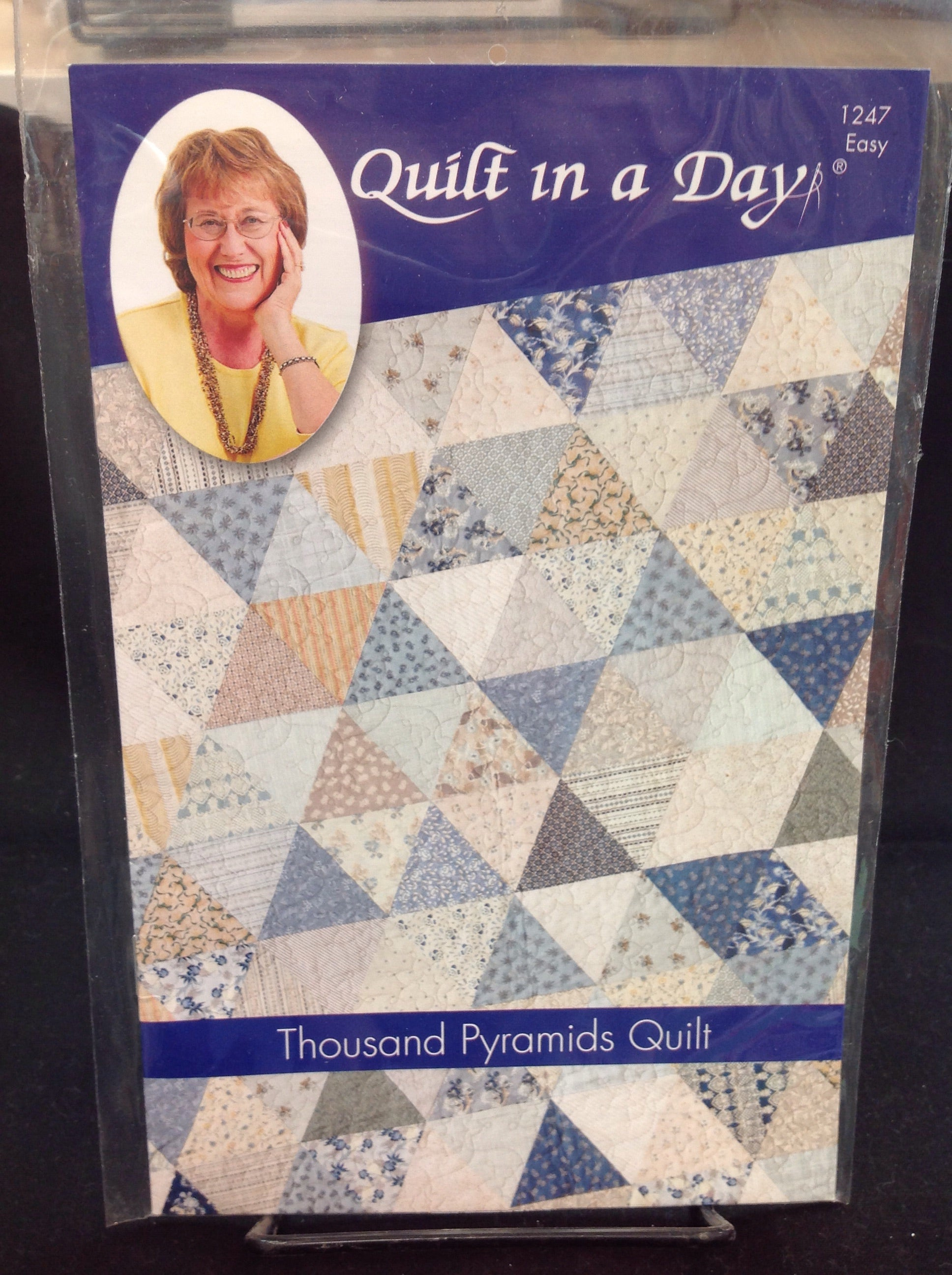 Thousand Pyramid Quilt  by Quilt in a Day