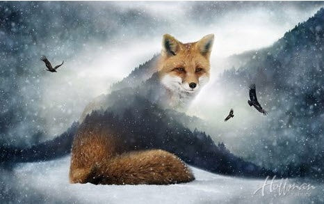 "Call of the Wild digital panel - Fox - 24358-293 - 27"" (69cm)"