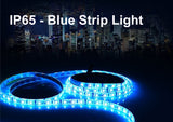 Waterproof IP65 High Power Blue Colour Strip Light - Low Voltage