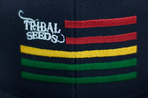 Tribal Flag Snapback Hat