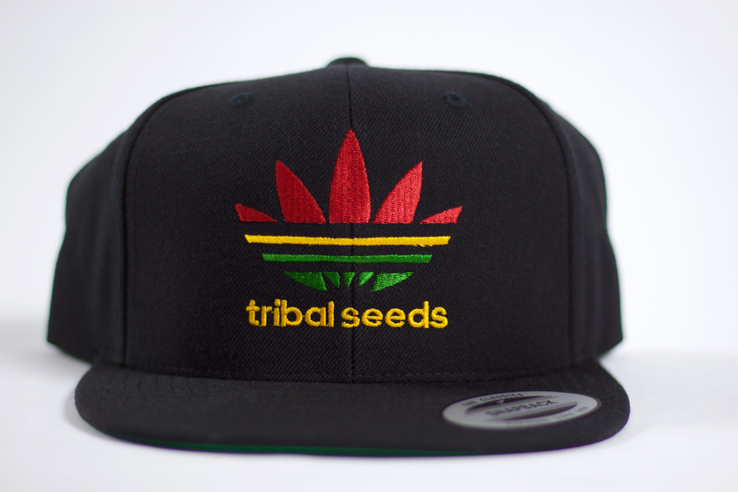 Tribal Sport Snapback Hat