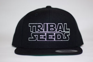 Star Seeds Snapback Hat