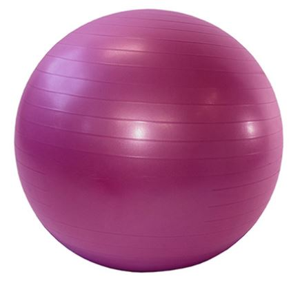 Burst Resistant Gym Exercise Ball