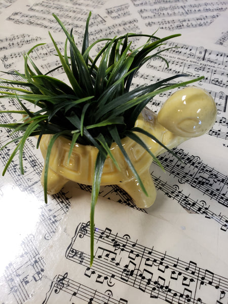 Ceramic turtle flower arrangement